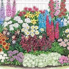 a guide to successfully designing a perennial garden 1001 gardens
