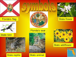Florida State Wild Flower - by alec delise menu landmarks facts flag maps famous people