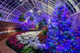 phipps conservatory christmas lights winter flower show and light garden 2017 holiday magic phipps