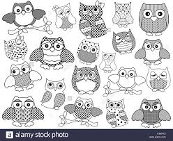 amusing and twenty ornamental owls set black vector