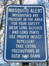 Where Do Mosquitoes Hide In Your Room by Fact Sheet Mosquito Borne Diseases