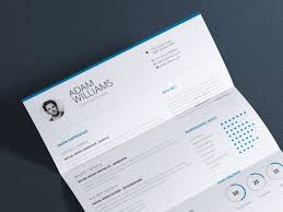 clean resume vol 7 word and indesign cv template by paul workolio