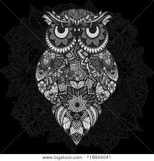 patterned vector owl on ornamental vector photo bigstock