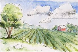 learning how to draw expressive lines in pen ink u0026 watercolor