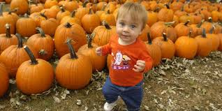 spirit halloween daly city pumpkin patches halloween events this weekend oct 16 18