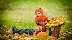 autumn pumpkin wallpaper widescreen download wallpaper 3840x2160 park grass autumn mood