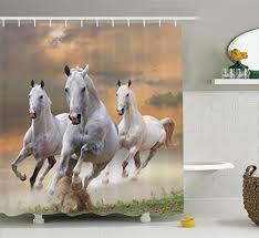 Horse Bathroom Accessories by Equestrian Decorations Amazon Com