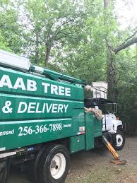 aab tree delivery service inc home