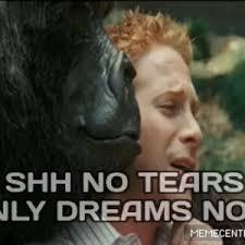 Shh Meme - shh no tears only dreams now reaction gif by rayyzo meme center