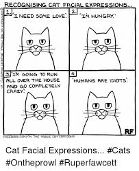 Cartoon Cat Memes - recognising cat facial expressions sutl need some love im hungry 3