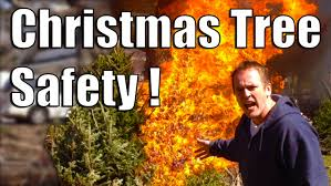 christmas tree safety youtube