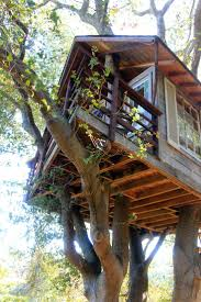 1526 best tree nature houses images on pinterest treehouses