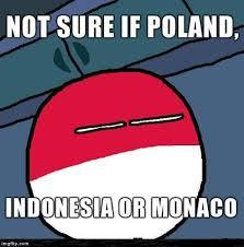 Meme Maker Fry - futurama fry polandball edition imgflip