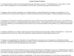 genetics problems worksheet free worksheets library download and