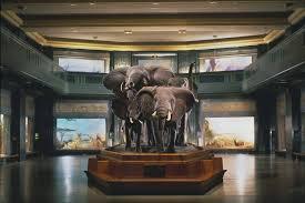 museum of museum of history york city museum