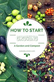 compost and gardening tips cuisine