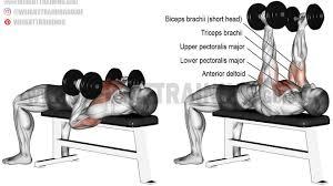 hammer grip dumbbell bench press exercise gym pinterest