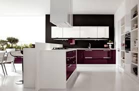 delightful purple kitchen ideas with high gloss kitchen cabinets