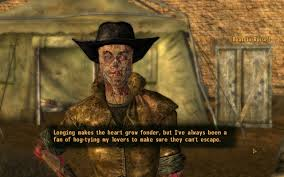 Fallout New Vagas Porn - a young ladies patriarchal primer the feminist fallout