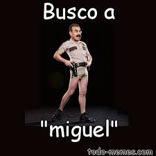Miguel Memes - arraymeme de busco a miguel