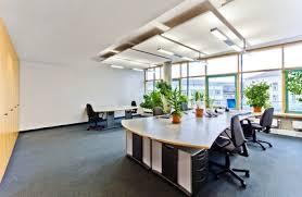 plante bureau quelles sont les plantes à privilégier au bureau