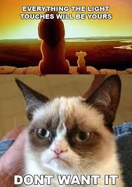 Grumpy Cat No Meme - grumpy cat no meme very funny segerios com segerios com