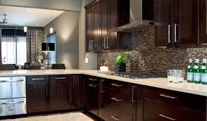kit kitchen cabinets kitchen satisfactory glamorous kitchen cabinets espresso maple