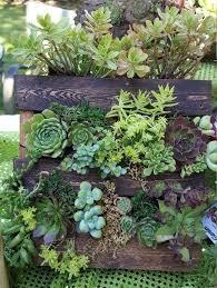 best 25 pallet garden walls ideas on pinterest garden ideas for