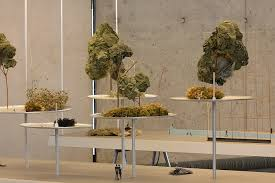 Foret Suspenue Hanging Forest Reveries Urbaines Ronan And Erwan