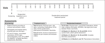 Define Single Blind Experiment Efficacy And Safety Of Sacubitril Valsartan Lcz696 In Japanese