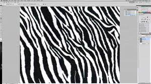 cafd ii zebra print fabric repeat youtube