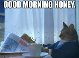 Good Morning Cat Meme - funny cute silly good morning memes