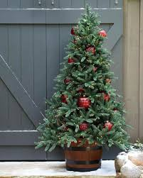 outdoor tree u fold flat by lori greiner with lighting