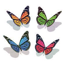 lolitattoo 3d butterfly