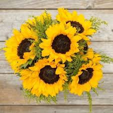 sunflower delivery sunflower bouquet delivery send sunflowers the bouqs co
