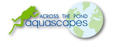 Aquascapes Com Across The Pond Aquascapes Across The Pond Aquascapes Pond Blog