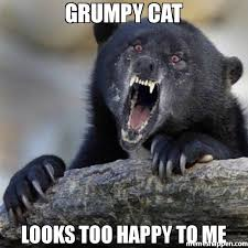 Grumpy Cat Meme Happy - grumpy cat looks too happy to me meme insane confession bear