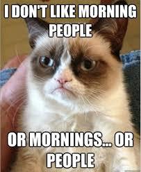 Morning People Meme - morning people grumpy cat meme