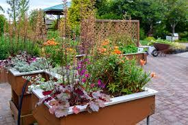 Small Garden Ideas Photos by Wsu Discovery Garden Skagit County Washington State University