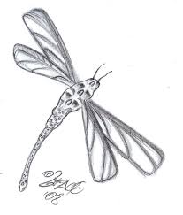 skull dragonfly tattoo design by 2face tattoo on deviantart