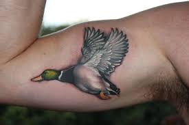 3d southern duck tattoos designs free live 3d hd pictures