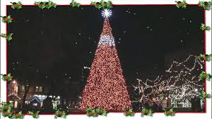 central park christmas tree johnstown pa youtube
