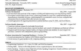 delight resume template website tags resume templte resume