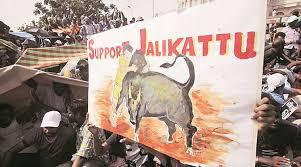 Seeking Chennai Jallikattu Protests Live Updates Tamil Nadu Assembly Clears Bill