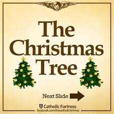 Significance Of A Christmas Tree Christmas Prelude The Significance Of Catholic Fortress Facebook