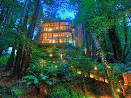 Amazing Houses 41 Best Tree Houses Images On Pinterest Amazing Tree House