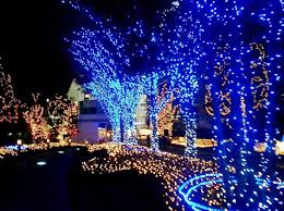 Outdoor Christmas Decorations In Canada by Decoration Marvelous Outdoor Christmas Decorations Ideas With