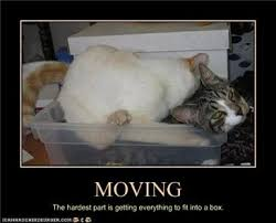 Moving Away Meme - coolest moving away meme a little break also some links things