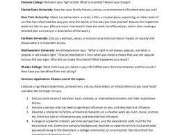 15 sample college admission essays college application essay