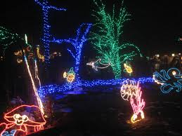 Zoo Lights Boston by Cheryl And William Hogle Zoo Lights